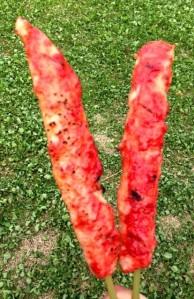 fake grilled kani sticks